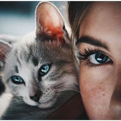 猫メイクがとっても可愛い♡100均コスメで猫メイクを完成!