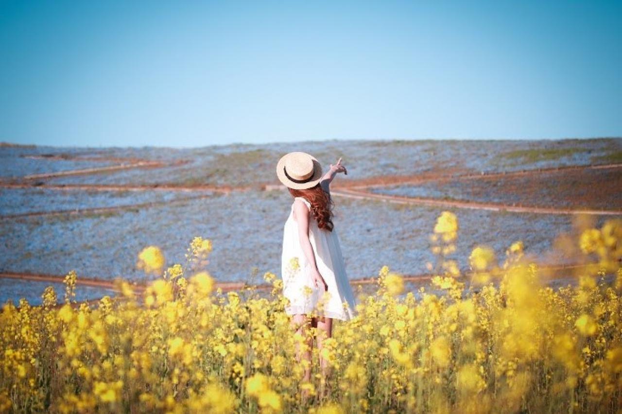 菜の花畑で空を指差すとってもポジティブな女の子