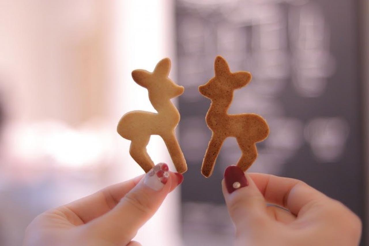 見つめ合う クッキー