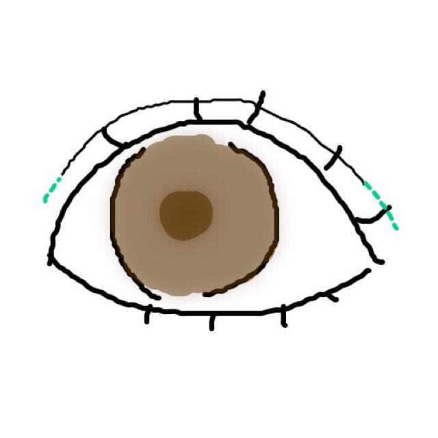 まずは目を大きく見せるために二重線を少し長くなるようにアイブロウや専用のペンで書きましょう (薄くナチュラルに)