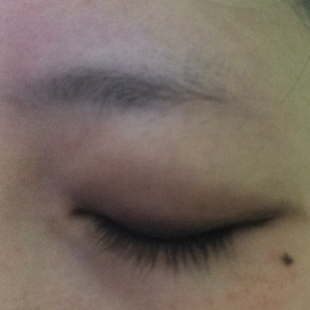 眉毛(`・-・´)のBefore画像