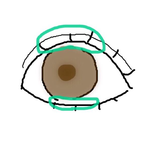 上下のまつ毛をビューラーでカールして、マスカラを塗ります。 正面から見た黒目の上(緑の丸)辺りに重ね塗りをしましょう。