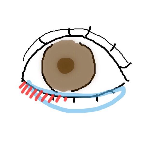 水色:涙袋はピンクのアイシャドウをオン! 黒目の下を中心に塗っていきます(グロスみたいな感覚です) 赤:白のアイシャドウを塗って、よりうるツヤな赤ちゃん目に近づけます!
