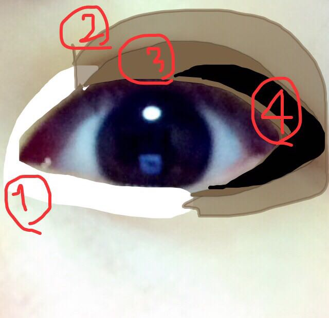 雑でごめんなさい。 1.ハイライトの白を特に下はがっつり半分くらいまで 2.色がなかったんですが、どちらかというと黄色味のある明るいブラウン(ラメラメも可 3.一番濃いブラウンを二重幅オーバーしても構わないので、ガッツリ目頭1/3以外を残してぬる (2.3は目尻もしっかり塗る) 4.濃くしたい方はうっすら上下1/3にブラックのシャドウを入れると濃くなるし、つけまと馴染みます。
