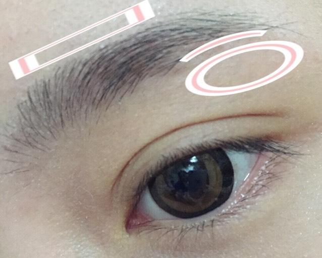素の眉毛です。  上の四角、丸の部分に生えていた毛を少し整えます。  眉毛尻の部分を眉バサミで毛を整えます。  眉頭の毛も整えます。