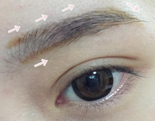 矢印の方向に向かいながら、眉の輪郭を描きます。