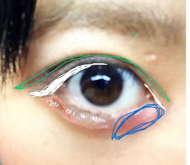 ピンク線の黄色シャドウで下瞼上瞼目頭をぬります。 緑線の濃茶シャドウで目を伏せたときにできる二重線に沿ってダブルラインを引きます。オレンジ線薄茶シャドウで目尻をなじませるようにぬります