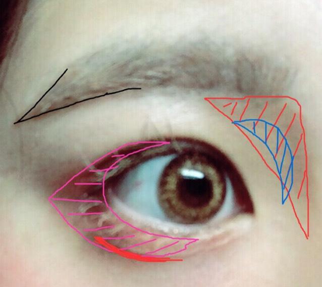 白線のアイシャドウをまぶた全体→ピンク線の赤みのかかったアイシャドウをピンク線に。 アイブロウパウダーで 赤線のところをぬります。青線はこくぬります。