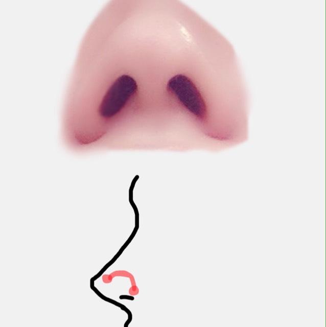 最後に鼻プチをします 私はSサイズを使いましたがお好みで。 上側を奥に、下側を見えるか見えないかぐらい手前になるよう微調整しながら鼻の穴の形を意識して鼻をつくりましょう