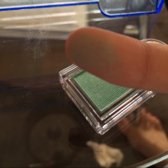 マジョリカマジョルカのシャドーカスタマイズGR162を中央から小指で塗っていきます。