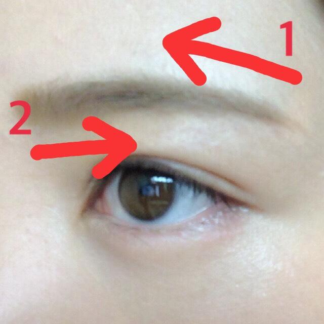 1.毛並みに逆らうように眉毛の根元まで色をつける  2.毛並みに沿って眉毛をなぞり、毛並みを整える。