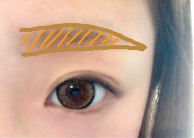 ケイトの眉毛の粉で粉を混ぜながらいい色を作って中を埋めます。眉毛の半分右は気持ち濃い目で左半分は1番薄い色で!