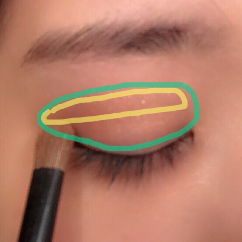 次にcのアイシャドーを小さめの筆にとり緑色の枠全体にのせていきます。黄色い枠(二重幅)中心にのせていきます。