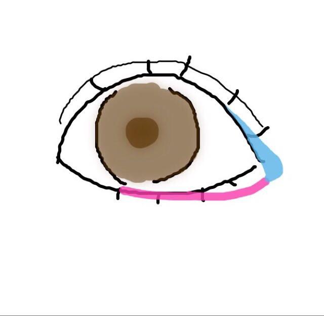 青色:できるだけ大幅に跳ね上げたり、たれ目にならないようにしましょう(ペンシルを使うと◎) ピンク:ペンシルで黒目の下辺りに沿うように書いてから青色の線に繋げます