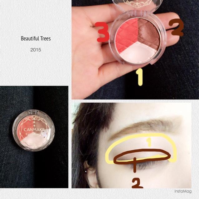 キャンメイクの三色アイシャドウを写真のように指でとって塗る。