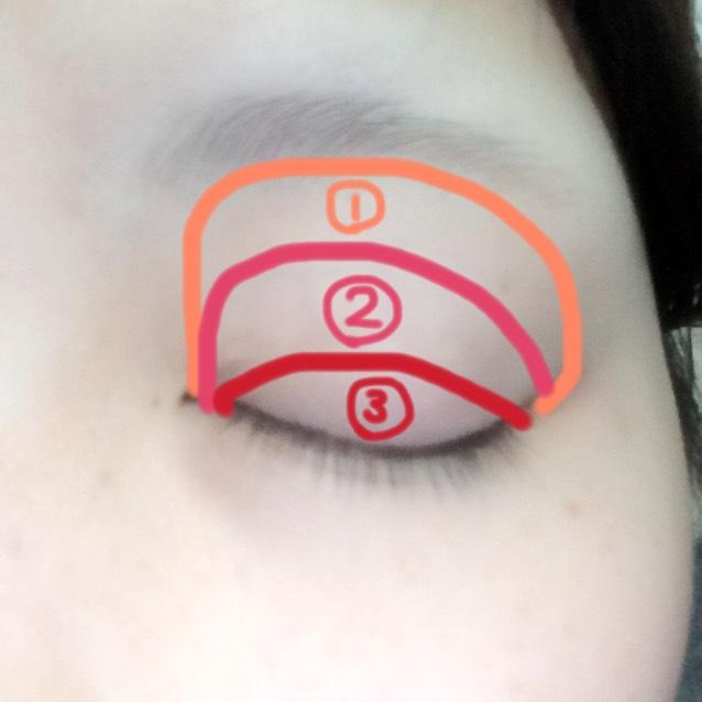 アイホール全体に①を乗せ、眉から1㎝下ぐらいに②を載せる。 自分の二重幅に③を乗せグラデーションを作る。  ※チップなどでシャドウを乗せた後指で全体を馴染ませるよ(^-^)/