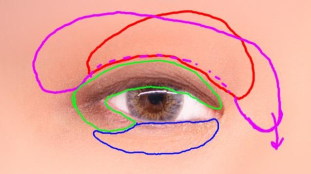 アイシャドウはしっかりと塗りつつヌーディに仕上げる 赤→ピンクホワイト(一番上) 紫→メタリック混ざりライトブラウン(二段目 緑→ダークブラウン(三段目(キワをしっかり 青→ゴールド(四段目