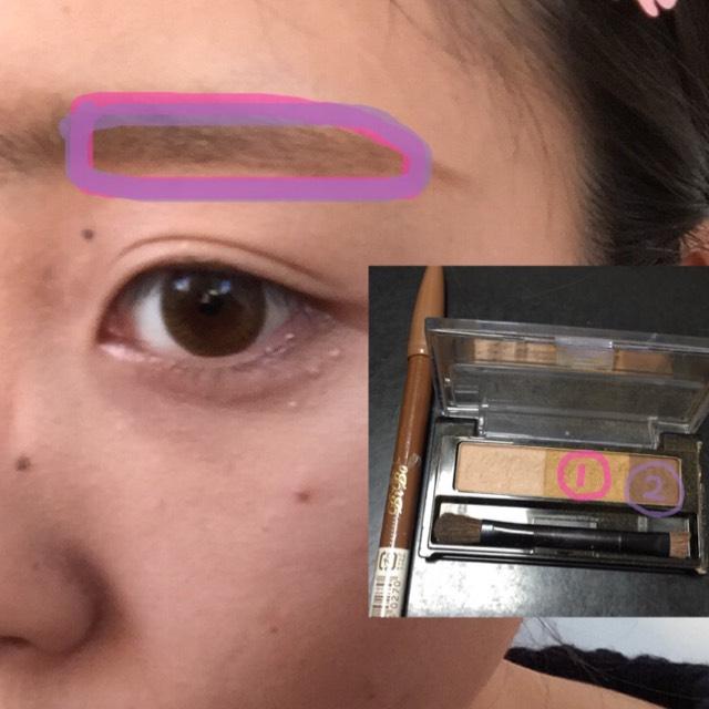 ①②輕輕的塗上眉粉!眉尾用眉筆畫!