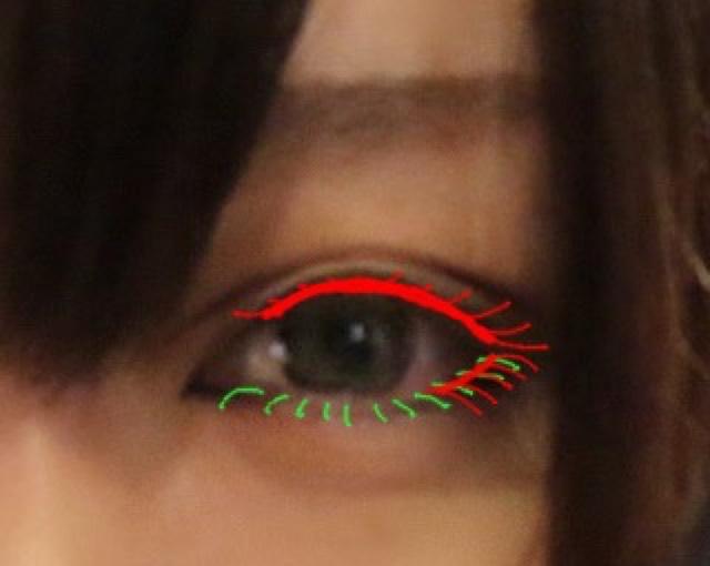 赤→つけま 緑→マスカラ をします つけまは目尻の毛を立てるイメージでつけてください 最後にホットビューラーでつけまと自まつを馴染ませるとより自然に仕上がります