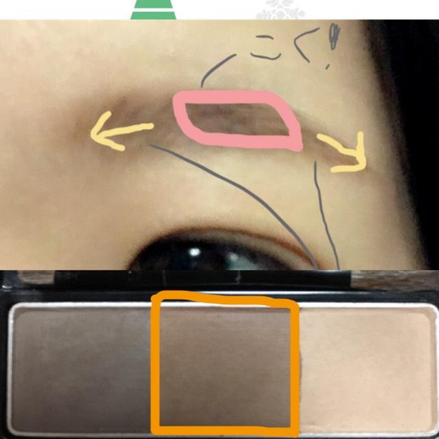ピンク線の中、眉山付近が濃くなるように、オレンジ線で囲んだ真ん中の色で眉を描きます。眉頭と眉尻は矢印の方向に薄くなるように描きます。
