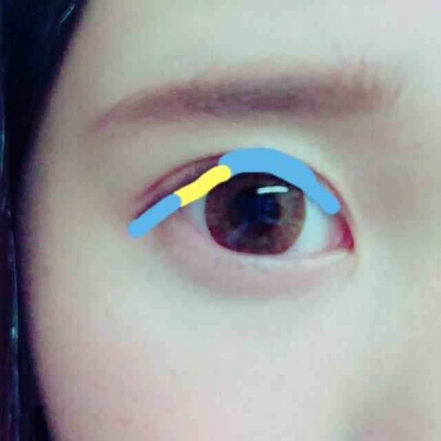 ペンシルでめん膜を埋めた後ジェルライナーで青のところを引きます(黒目の上は気持ち太く)黄色のところは引きません!(タレ目になるので)