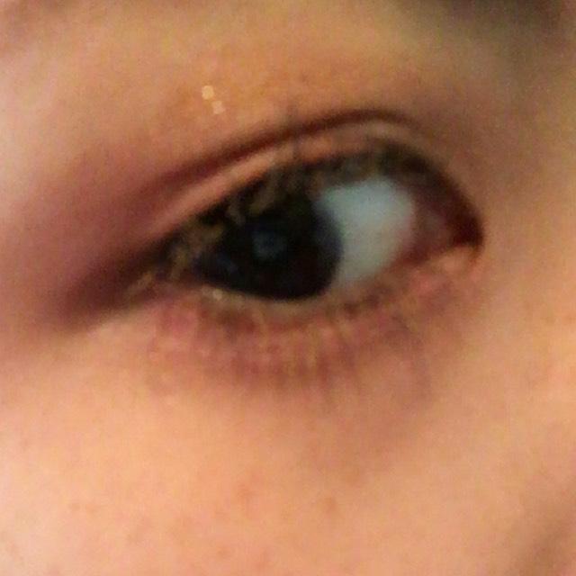 睫毛に眉マスカラを塗ります 茶色なら何でもOKです