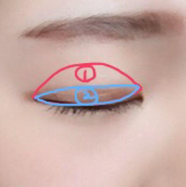 眉毛は並行になるように書きます アイシャドウは①に薄い茶色を②に濃い茶色を塗ります