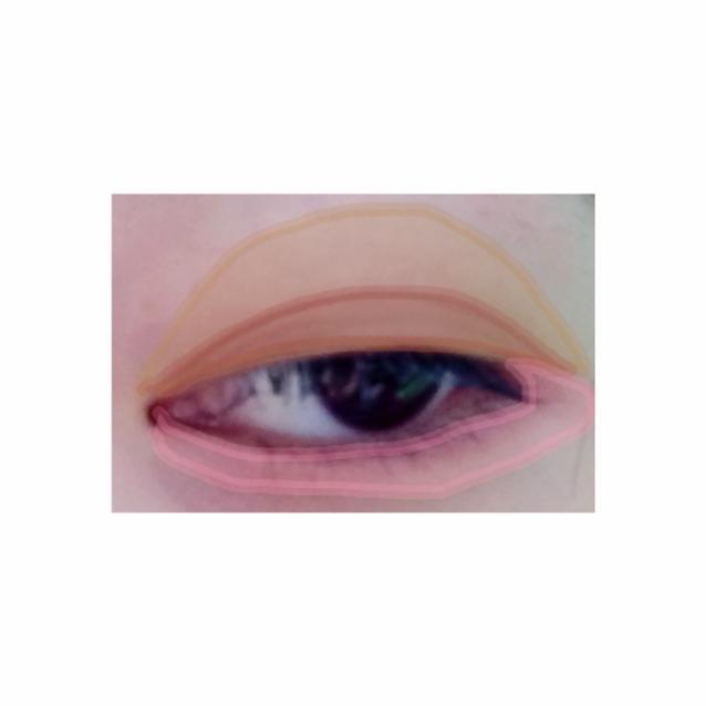 写真のように まず二重はばに一番濃い茶色を、  つぎにアイホール全体にベージュ、  最後に三角ゾーンと下まぶたにベージュとピンクを混ぜて塗ります  したまぶたに肌なじみの良い色を使うことにより、抜け感がでるらしいです