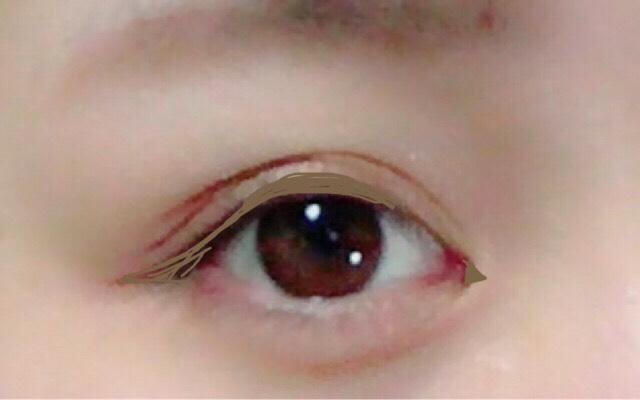 次にセザンヌ 極細アイライナーNのブラウンで  目頭に薄く切開を書き 黒目の上あたりから ラインを書きます。 ポイントとしては黒目の上を太めにすること。 目尻はあんまりはねないように目にそって書くこと。