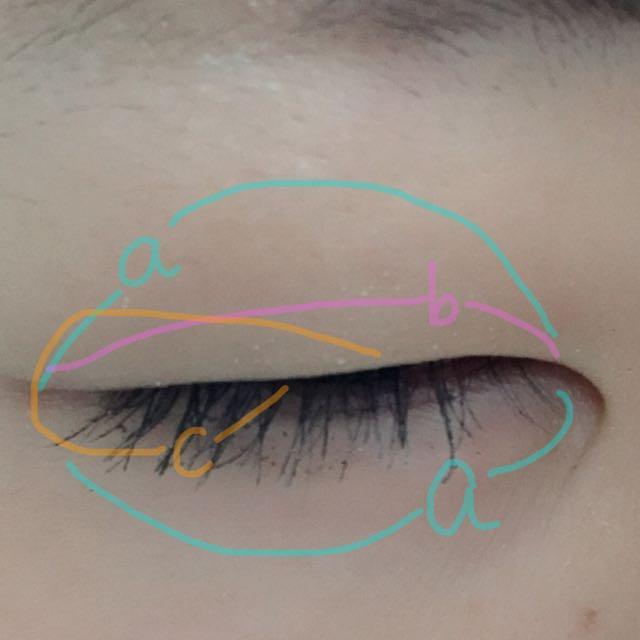 cを黒目の上あたりから下まぶたの1/3まで筆で塗ってください。