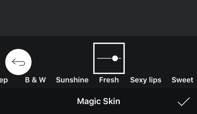 エフェクト→magic skin→freshを選択