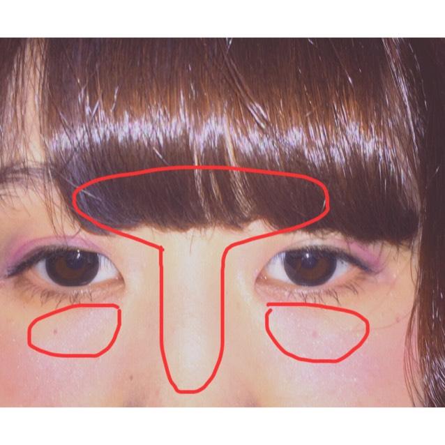 赤いペンで囲った部分にハイライトを入れていく  鼻筋は下の方まで入れすぎない方がいい((鼻先がテカって目立ちすぎるから))