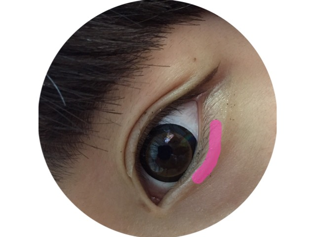 涙袋の上にアイシャドウを乗せます! 特にピンクの部分に多めに乗せると涙袋が強調されると思います!