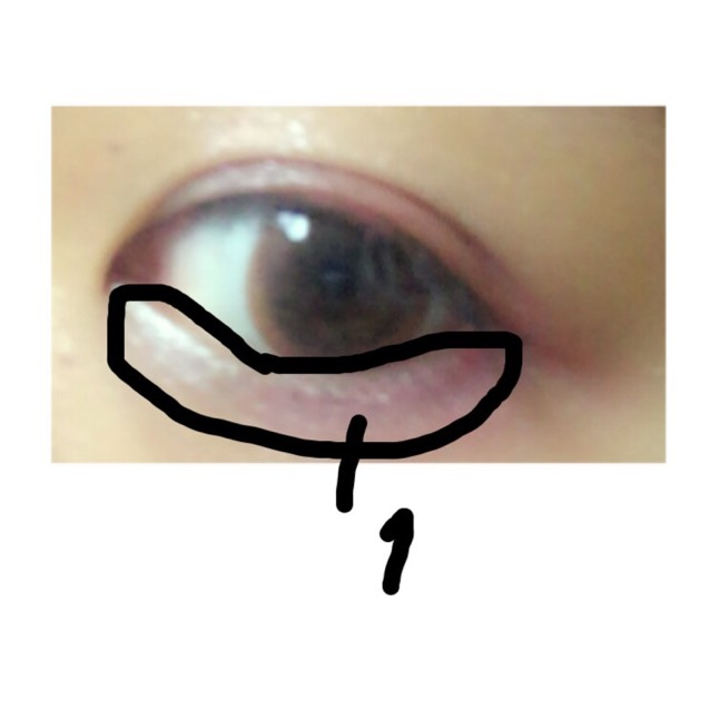 そして、下まぶたの全体に「1」を塗っていきます ⚠️この時、目頭から塗るのがポイントです