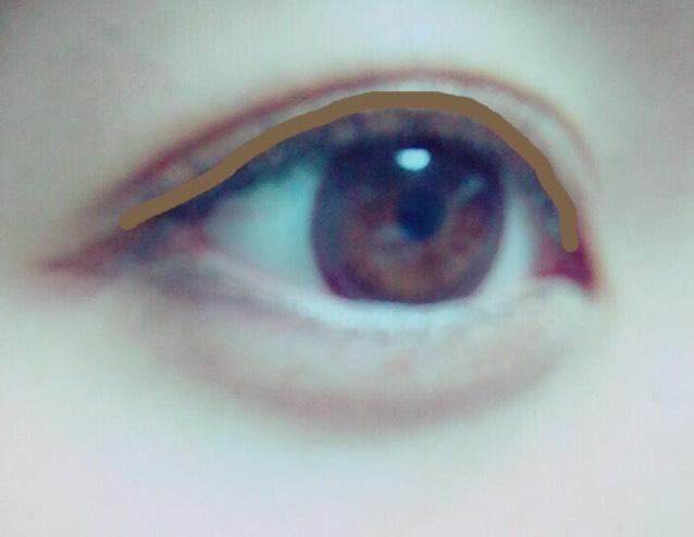 像是要蓋住眼線一般,將②號色塗在這條咖啡色標示線上!
