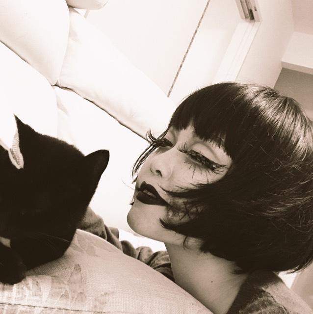 ハロウィンに黒猫