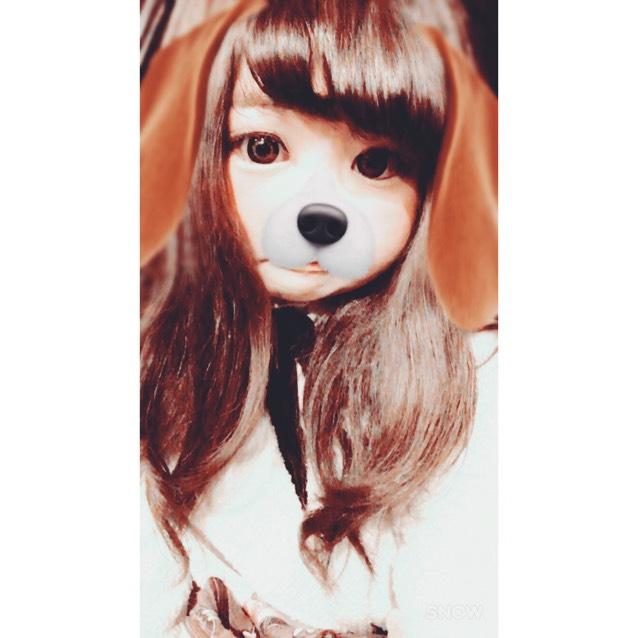 JILL Honey Bunny BROWN ♥