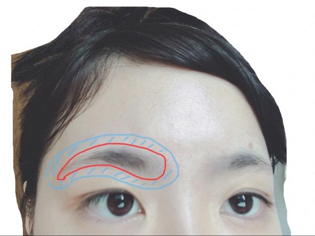 クリームを塗る前にまゆげの周り、青色の部分にワセリンを塗ります。  脱色クリームは成分が強いので皮膚を守るために塗ります。
