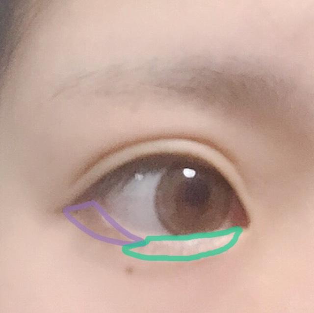 緑:ベージュのアイシャドウで涙袋を作る 紫:ブラウンのアイシャドウを目尻3分の1にのせる