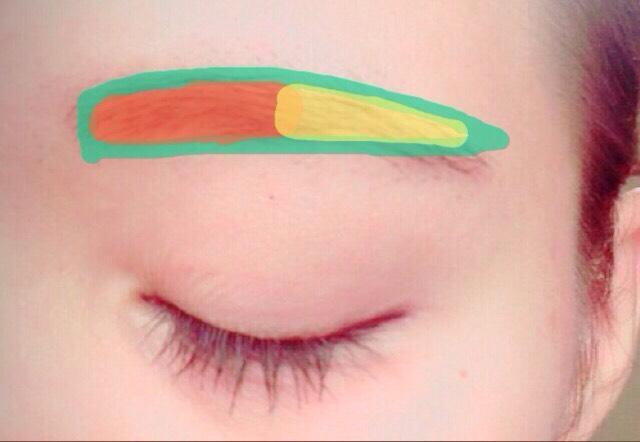 眉尻をペルシルで整えて(黄色)、眉頭はパウダーでぼかします(オレンジ) 最後に眉マスカラで整えます