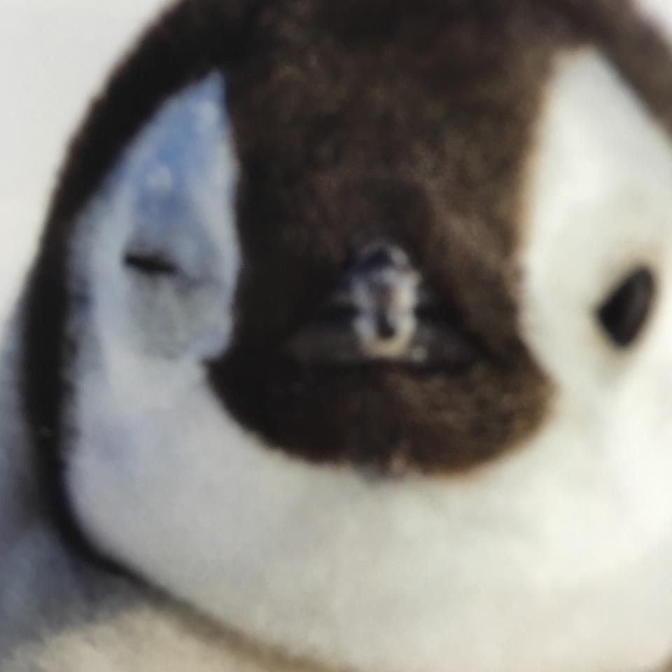 トマトメイク(´∇`)のBefore画像