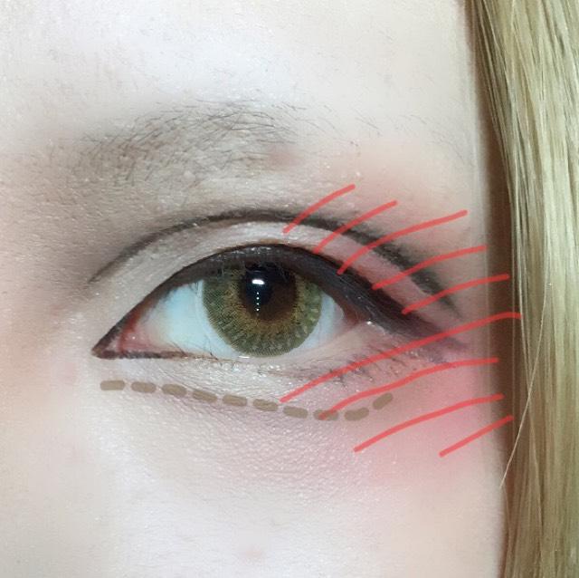 ダブルラインをアイブロウパウダーでぼかし立体感を出した後画像の点線の形を意識して涙袋の影を付けます。 離れ目が気になる人は目頭側まで線をぼかすと目が近く見えます。