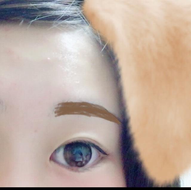 茶色い部分に4番の真ん中の色を眉毛にぬります  そうしたら11番を最初は眉毛に逆らってぬり、毛並みにそって眉マスカラをぬります