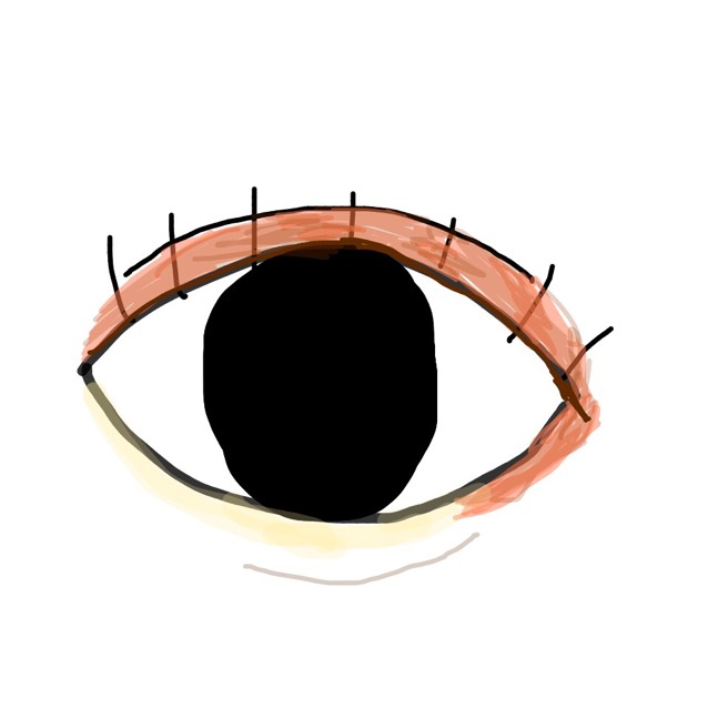 これが目だとしたら二重のところ(茶色っぽい部分)に7番のオレンジチークをぬり、5番の2番目に濃い色をオレンジチークの上からぬります。  涙袋(黄色い部分)に6番の薄ピンクと8番のゴールドを混ぜた色をぬります。  茶色い線に4番の一番薄い色で涙袋の影を書きます。