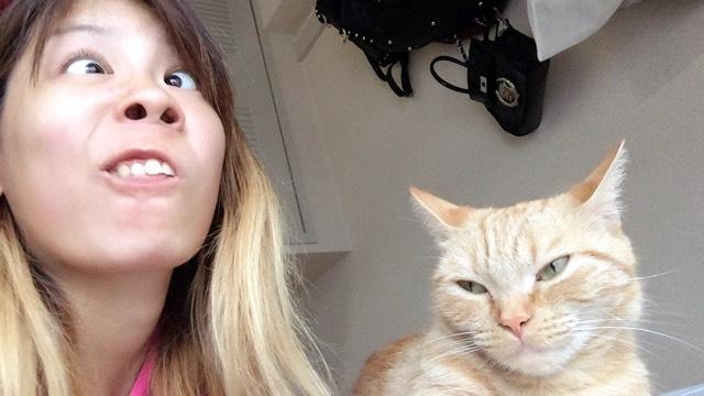 そして最後に帰ってきて大好きな猫と写真  気まずそうな顔してんな おい。