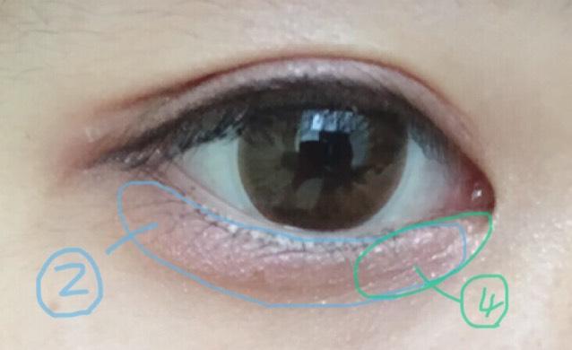 ②を指で涙袋に、④を目頭側にぬります。 今回は囲み目にしてみました。