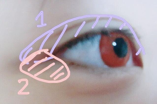 先ほどのパレットに降られてある数字の順番通りにアイシャドウを瞼に載せていきます
