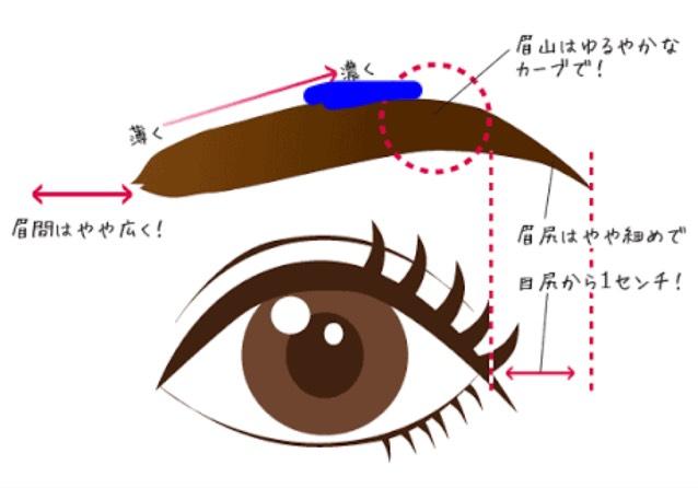 地味にスゴイ!校閲ガール河野悦子の眉は穏やかアーチ眉です。 まず毛の流れに沿って平行眉を描いた後、青色の線がある部分に描きたします。