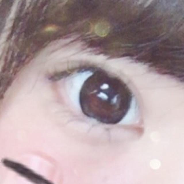 たくさんの目