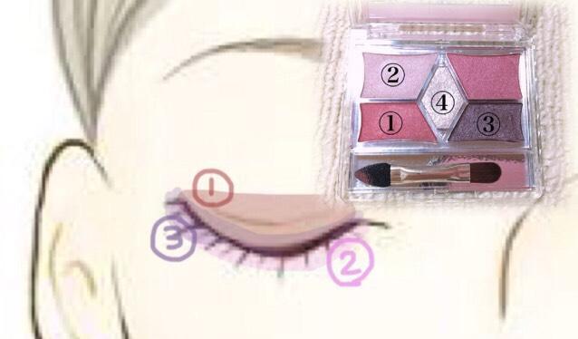 ②を上瞼、下瞼に塗ります。ベースになります。 ①を二重幅に塗ります。かなり濃いので薄く薄く伸ばします。二重幅以上に塗ると目が腫れて見えるのでご注意ください! ③はアイラインを引いた後アイラインをぼかす様に際に塗っていきます。下瞼には目尻から1/3くらいまで塗ります。 ④は①の上に塗ります。①や他のカラーはかなりマットなアイシャドウなので④を上に重ねてキラキラ、ウルウルな目元になるように塗ります。光が当たるととてもキラキラして可愛いです、  番号バラバラでややこいです、ごめんなさい_(._.)_